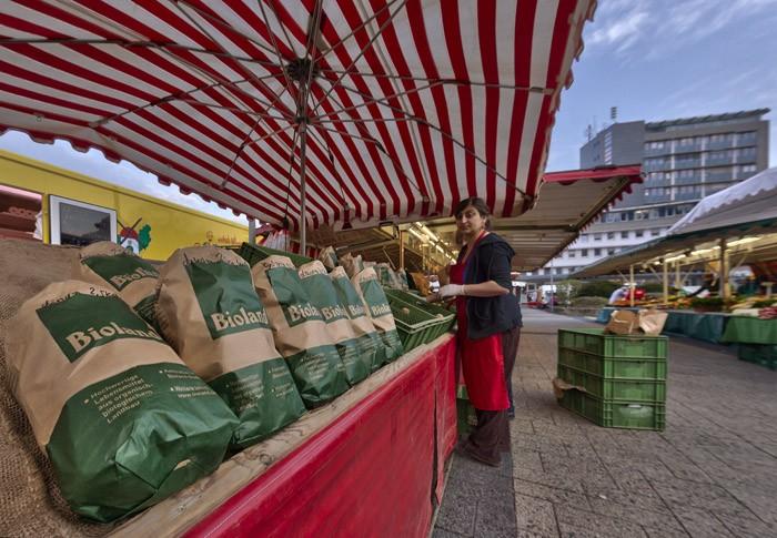 Wochenmarkt Hameln Marienhof