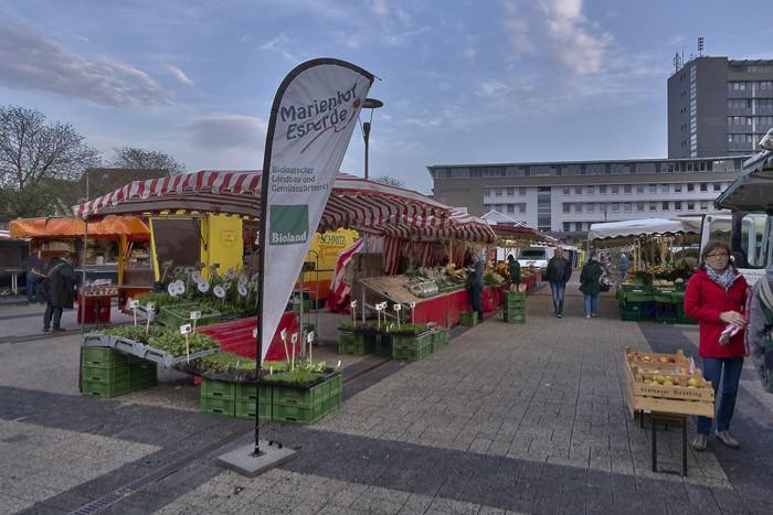 Wochenmarkt Hameln Marienhof1